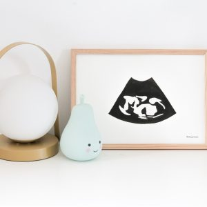 Echo zwanger schilderij kraamcadeau